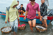 Traditional fishermen in the village of Reboh, Bangka Belitung Islands, bring in the fish they catched in their small boats on the Indian Ocean, Indonesia. Fishing decreased due to the tin mining on the open sea. Bangka Island (Indonesia) is devastated by illegal tin mines. The demand for tin has increased due to its use in smart phones and tablets.<br /> <br /> Les pêcheurs traditionnel apportent du poisson, village Reboh, îles Bangka Belitung, Indonésie. La pêche diminue à cause de l'exploitation sous martine de l'étain. L'île de Bangka (Indonésie) est dévastée par des mines d'étain sauvages. la demande de l'étain a explosé à cause de son utilisation dans les smartphones et tablettes.