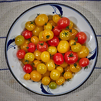 Yellow and Red Cherry Tomatoes grown in my indoor hydroponic farm. Image taken with a Leica CL camera and 60 mm f/2.8 lens (ISO 500, 60 mm, f/2.8, 1/125 sec)