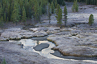 Frost covered wetlands, Kananaskis Country Alberta