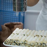SCHWEIZ - WETZIKON - Nudelwerkstatt 'La Martina' hier frische Cannelloni aus Weizen mit Spinat-Quark-Füllung - 05. Oktober 2016 © Raphael Hünerfauth - http://huenerfauth.ch