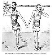 The brothers Healy make their bow after their marvellous performance in committee. (a Victorian cartoon shows Maurice and Timothy Healy holding hands as an acrobatic troupe with the Irish Land Bill Committee tightrope behind them)