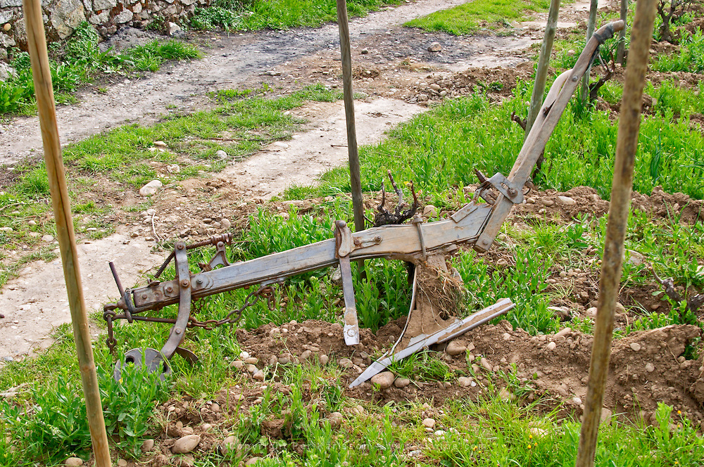 In the Chapoutier vineyards Les Greffeux an old horse drawn plough to work the vineyards lying between the vines. Hermitage. Tain l'Hermitage, Drome, Drôme, France, Europe