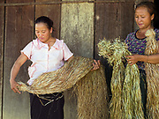 Ye and Yai with their peeled hemp fibres in the Hmong village of Ban Pom Khor, Houaphan province, Lao PDR. Making hemp fabric is a long and laborious process; the end result is a strong durable cloth with qualities similar to linen which the Hmong women make into skirts for their traditional clothing. In Lao PDR, hemp is now only cultivated in remote mountainous areas of the north.