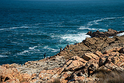 """Men fishing on the coastline between Gordon's Bay and Bettie's Bay, in the Western Cape, is seen on World Oceans' Day, Monday, June 8, 2020. As Coronavirus numbers soared, and with lockdown level 3 in place, South Africans lingered in a bit of limbo in regard to what's allowed and not allowed. Hiking, in certain places, and """"stealing"""" a view of ocean seemed allowable, but walking on the beach and surfing, for example, is not. PHOTO: EVA-LOTTA JANSSON"""