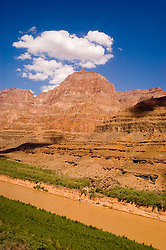 Scenic of Colorado River at the bottom of Grand Canyon, Arizona, AZ, cliffs, landscape, vertical, erosion, arid, Image nv447-18539.Photo copyright: Lee Foster, www.fostertravel.com, lee@fostertravel.com, 510-549-2202