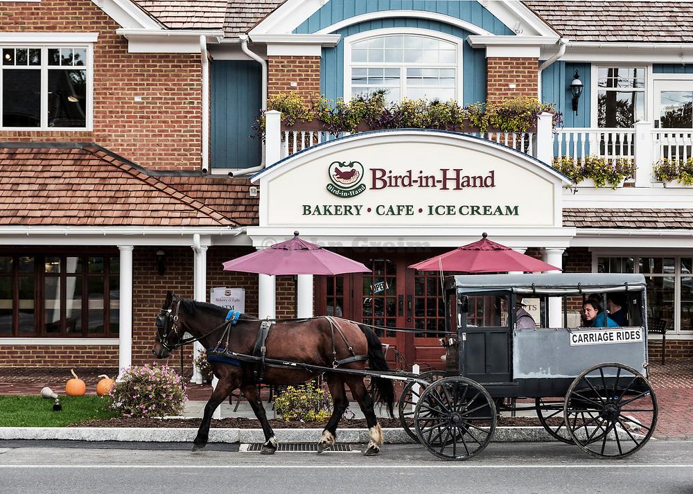 Horse drawn buggy ride, Bird in Hand, Lancaster, Pennsylvania, USA