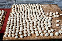 Kirghizistan, province de Naryn, le lac de Song Kol, campements de yourte des nomades Kirghiz, fromage // Kyrgyzstan, Naryn province, Song Kol lake, Kirghiz nomad's yurt camp, cheese