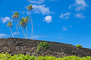 Maui, Hawaii. Kahanu Gardens, a national tropical botanical garden situated in Hana, is home to Piilanihale Heiau.  This Heiau, an ancient place of worship, is believed to be the largest in Polynesia and is registered as a National Historic Landmark