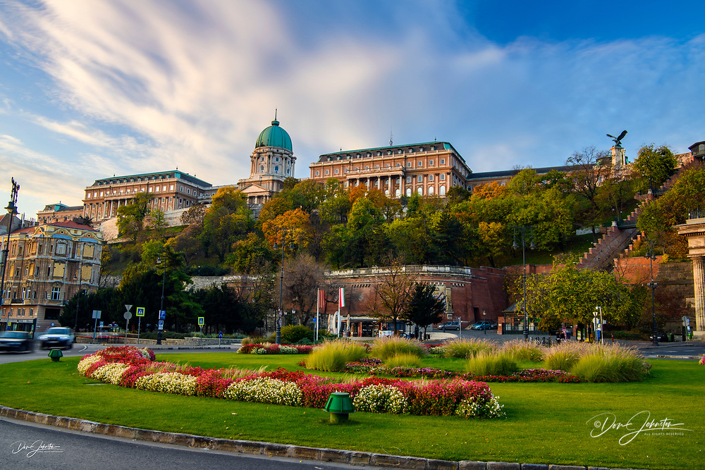 Buda Castle overlooking flowers in a traffic circle, Budapest, Central Hungary, Hungary