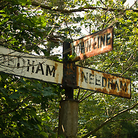 Old street sign for the needham dedham townline in the underbrush. The sign was found just off of Great Plain Avenue, in a section of road that was discontinued when route 95 was built.