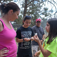 From left, Teri Sanchez, Melody Sanchez, Karissa Sanchez and Angelo Sanchez feel handfuls of fur shed from the wolves undercoats at the Wild Spirit Wolf Sanctuary in Candy Kitchen Tuesday.