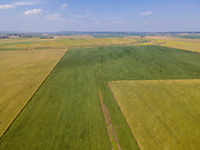 Aerial photograph of a soybean field, near Pacific Junction, Mills County, Iowa, USA.