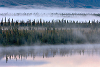 Morning fog at Broad Pass Alaska