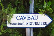 Domaine l'Aigueliere. Montpeyroux. Languedoc. France. Europe.