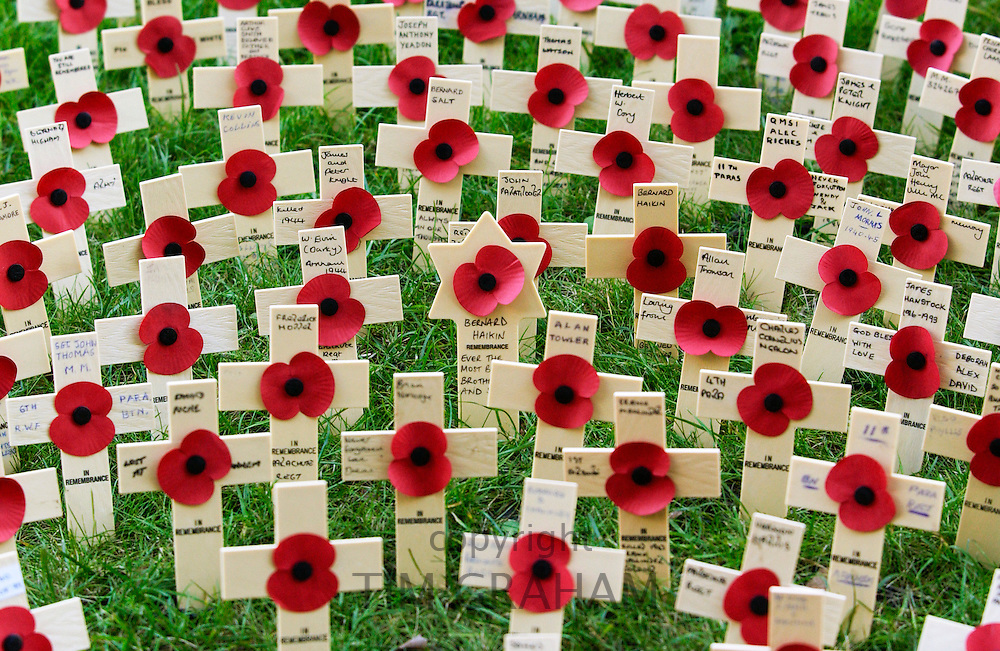 Poppies and crosses of remembrance for war dead soldiers and Star of David for Jewish soldier at St Margaret's Church in London