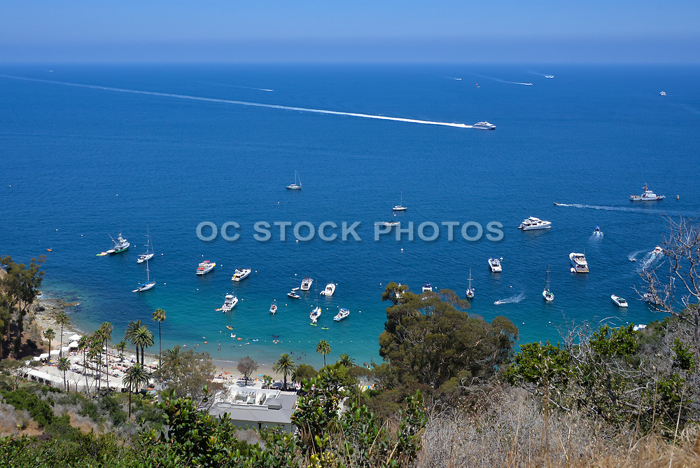 Descanso Beach From Above Catalina Island