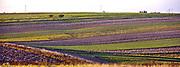 Dolina Prądnika, 2006-10-18. Obszary rolnicze w okolicy Dolinie Prądnika