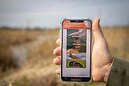 Gamebird Brood Observation App