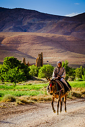 A Berber man on horseback rides passed a ruined Kasbah in the M'Guin Gorge in southern Morocco<br /> <br /> (c) Andrew Wilson   Edinburgh Elite media