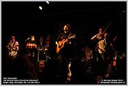 2012-12-26 The Thornbills