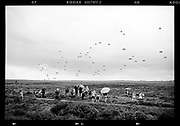 Memorial day Airborne landings Operation Market Garden. Operation Market Garden was an allied offensive in September 1944, at the end of World War II. It is the largest operation on Dutch territory during World War II. It was largely a failure for the Allies and the Netherlands because a final bridge at Arnhem could not be taken. In part, the west of the Netherlands was not liberated and had to do with the hunger winter.