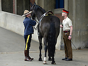 © Licensed to London News Pictures. 22/05/2012. London, UK A soldier from the Household Cavalry talks to a Mountie (L). Canadian Mounties rehearse with members of The Household Cavalry today 22 May 2012 to Guard Her Majesty the Queen at Horse Guards Parade. They will guard on Wednesday 23 May and will be the first non-British force to guard the Queen ever. Photo credit : Stephen Simpson/LNP