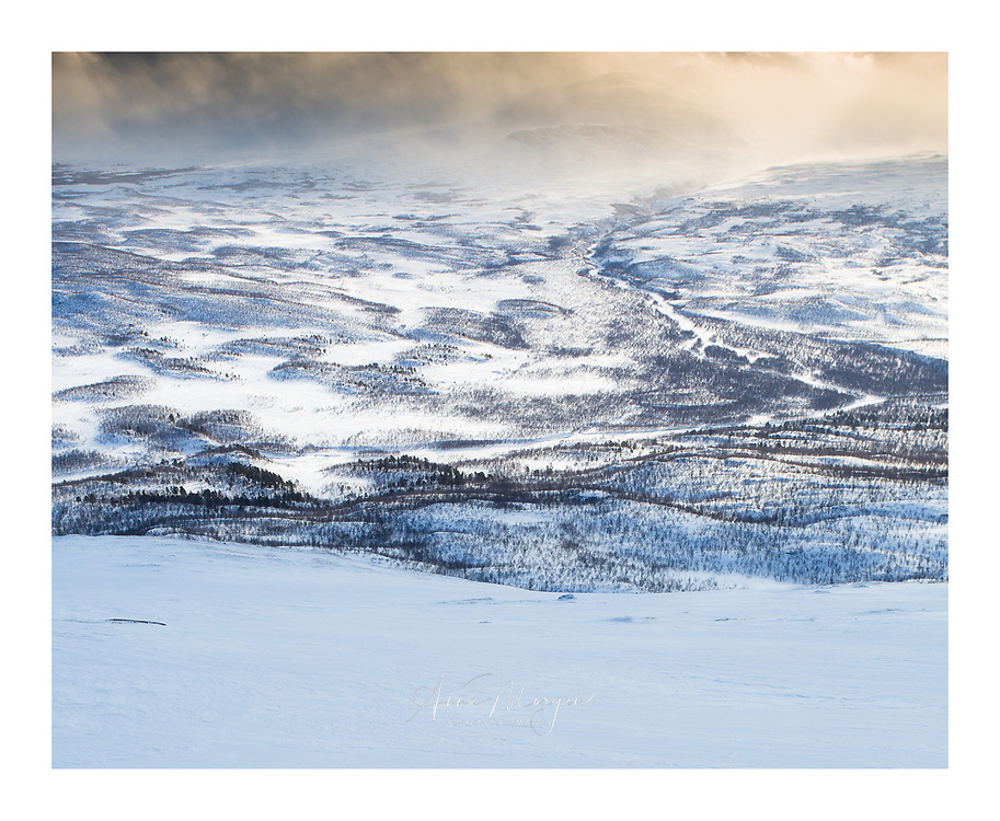 Early morning view over Abisko National Park in winter, Sweden