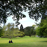 A couple sit in the grounds of the Auckland Domain, Auckland, New Zealand, 8th November 2010. Photo Tim Clayton.