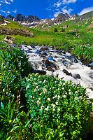 Mountain streams, American Basin, San Juan Mountains (range of the Rocky Mountains), Southwest Colorado USA