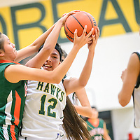 020215  Adron Gardner/Independent<br /> <br /> Wingate Bear Brittany Bruce (5), left, and Thoreau Hawk Amber Ashley (12) lock in a struggle for possesion  at Thoreau High School Monday.
