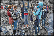 Day Tripper - Venice Pigeons is a street selective colour photography series by photographer Paul Williams taken on 26th September 2007 of tourists feeding pigeons in St Marks Square