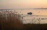 Boat at moorings winter sunset, River Deben, Ramsholt, Suffolk, England, UK