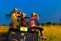 A family watching lions from the top of a safari vehicle, Tarangire National Park, Tanzania