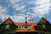 Tiled roof and palm tree. The Domain, Sydney, Australia