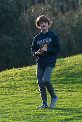 Max, Eltham College Environmental Reserve, Research, Victoria, Australia