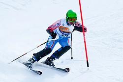JAMBAQUE Solene, FRA, Slalom, 2013 IPC Alpine Skiing World Championships, La Molina, Spain