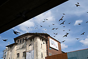 Local atmosphere due to Coronavirus lockdown is felt on a street by street level as streets remain deserted as a flock of feral pigeons fly above the derelict New Palladium Cinema, once the Hockley Picture House from under Hockley Flyover in Hockley as people observe the stay at home advice from the government on 7th April 2020 in Birmingham, England, United Kingdom. Coronavirus or Covid-19 is a new respiratory illness that has not previously been seen in humans. While much or Europe has been placed into lockdown, the UK government has announced more stringent rules as part of their long term strategy, and in particular social distancing.