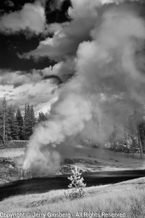 Riverside Geyser, Old Faithful Geyser Basin, Yellowstone National Park, Wyoming.