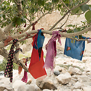 A shrine decorated with cloth on a tree, near the village of Wuch Urgent.<br /> The traditional life of the Wakhi people, in the Wakhan corridor, amongst the Pamir mountains.