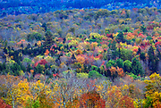 Fall(autumn) lansdscape of changing tree colours in upstate New York, near the Canadian border.