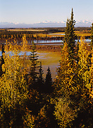 Autumn colors in boreal forest east of Beaver Creek, Saint Elias Mountians beyond, Yukon Territory, Canada.