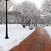 A red brick pathway in Lafayette Park opposite the White House is cleared after a recent snowfall that blanketted the entire region.