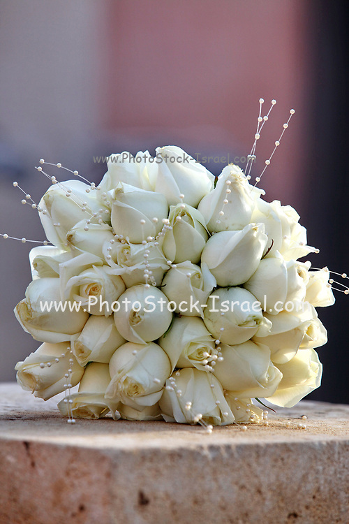 Wedding Concept Bridal bouquet of white roses