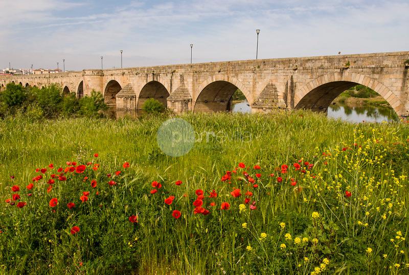 Puente romano y rio Guadiana. Mérida. Badajoz. Ruta de la Plata