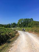 pilgrims walking the camino to Santiago in Castilla y Leon, Spain
