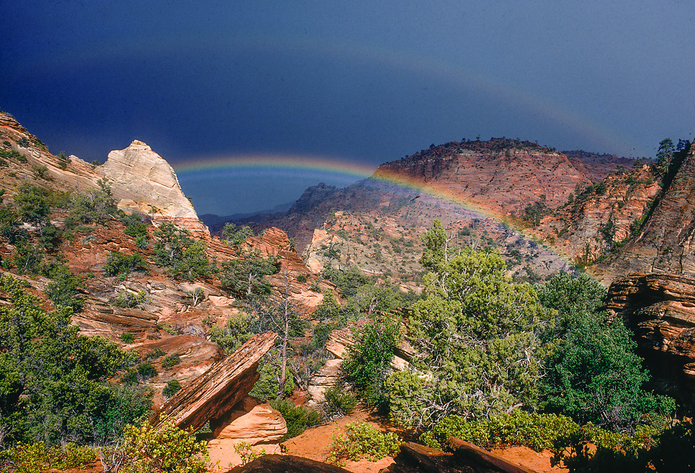 Rainbow  over sandstone, spring, Zion National Park, Utah, USA