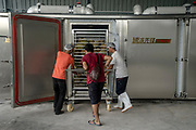 Workers load a cage of durians to be flash frozen for export at a small processing plant owned and run by Tan Eow Chong and his relatives in Relau, Pulau Pinang, Malaysia on June 17th, 2019. Durian fruits are flash-frozen at the plant using nitrogen gas before they are exported to countries such as China. Photo by Suzanne Lee/PANOS for Los Angeles Times