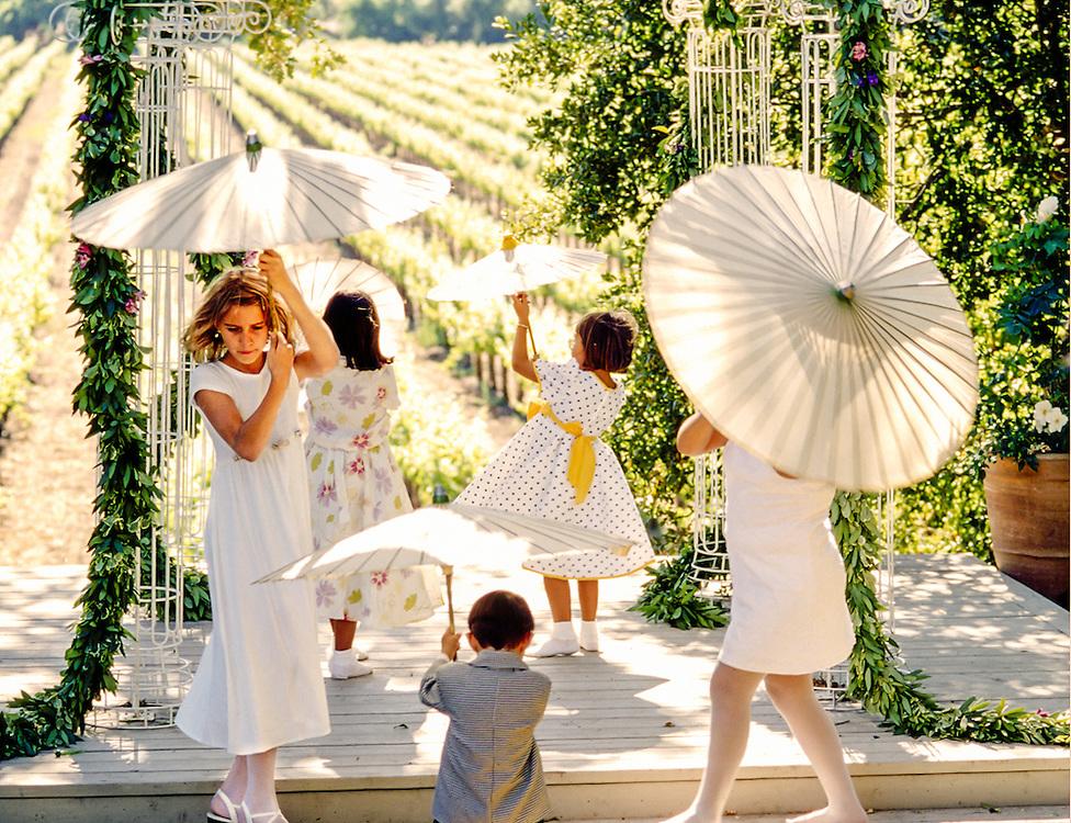 playing at a vineyard wedding
