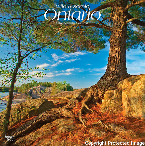 PRODUCT: Calendar<br /> TITLE: 2020 Wild & Scenic Ontario<br /> CLIENT:  Browntrout