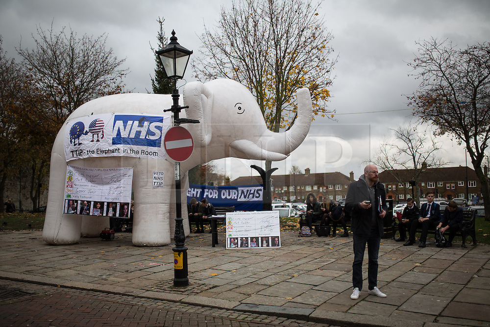© Licensed to London News Pictures . 17/11/2014 . Kent , UK . Anti TTIP white elephant demonstration opposite the Conservative campaign shop on High Street Rochester , ahead of the Rochester and Strood by-election . Photo credit : Joel Goodman/LNP